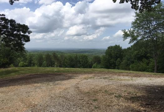 Land and Building Lots For Sale in East Alabama / Heflin Al