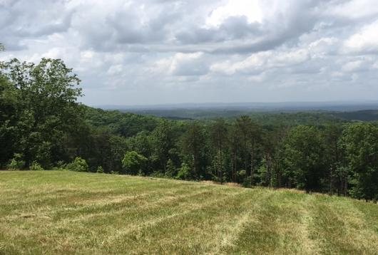 Land and Mountain Property For Sale in East Alabama